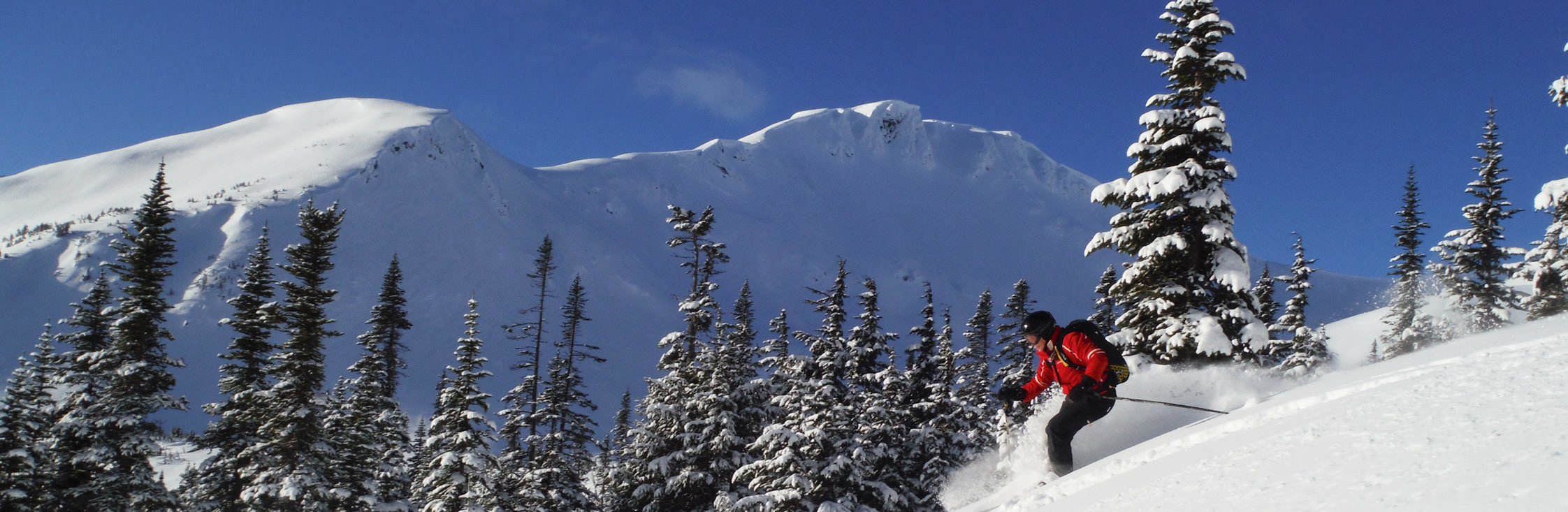 heliskiing_small_skeena-skier-forest-mountains